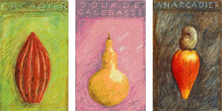 illustrations fruits exotiques pour cartes de voeux APAEC
